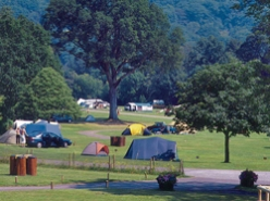 camping cheque campings
